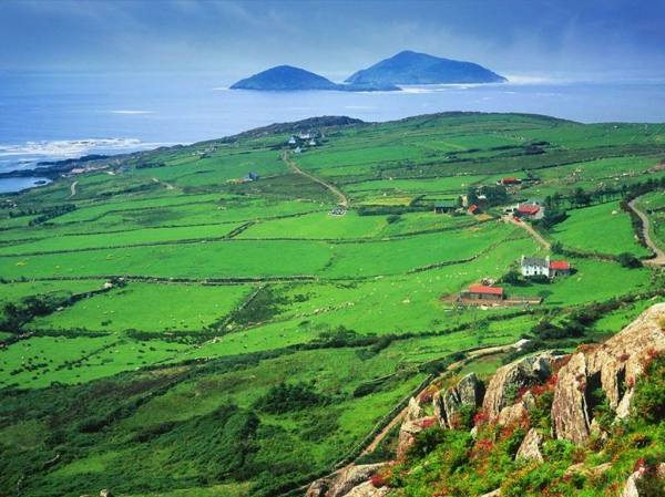 Green pastures of Ireland