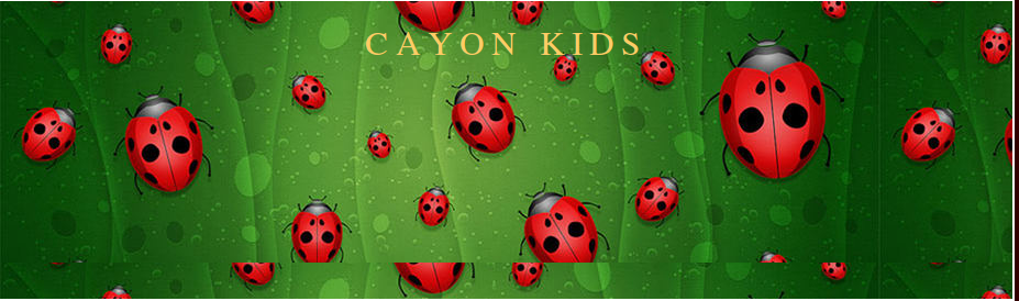 Cayon KIds Blogue de inglés para o 1º ciclo de Primaria